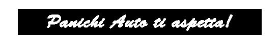 Panichi Auto.fw