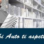 Panichi Auto Fiat Professional